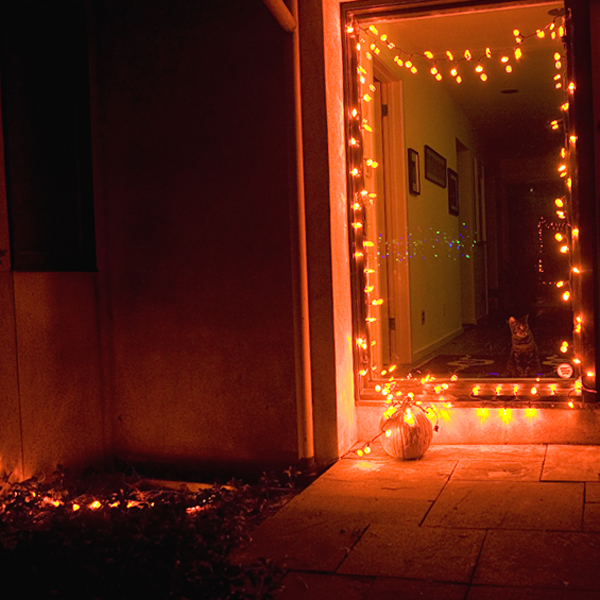 Halloween String Lights Indoor : Mr. Light :: Halloween :: Halloween String Lights :: Pumpkin LED String Lights 100 Lighted ...